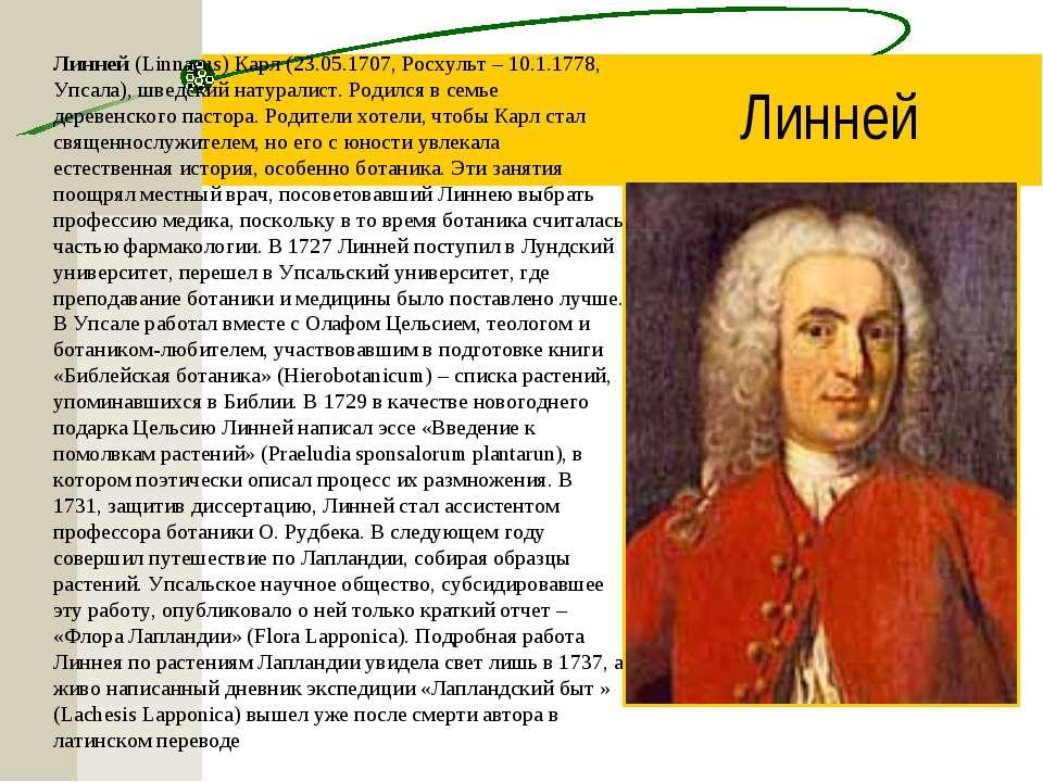 Линней (Linnaeus) Карл (23.05.1707, Росхульт – 10.1.1778, Упсала), шведский н...