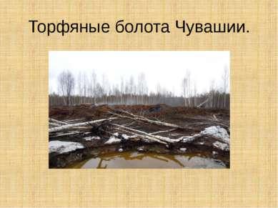 Торфяные болота Чувашии.