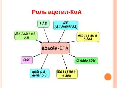 Роль ацетил-КоА