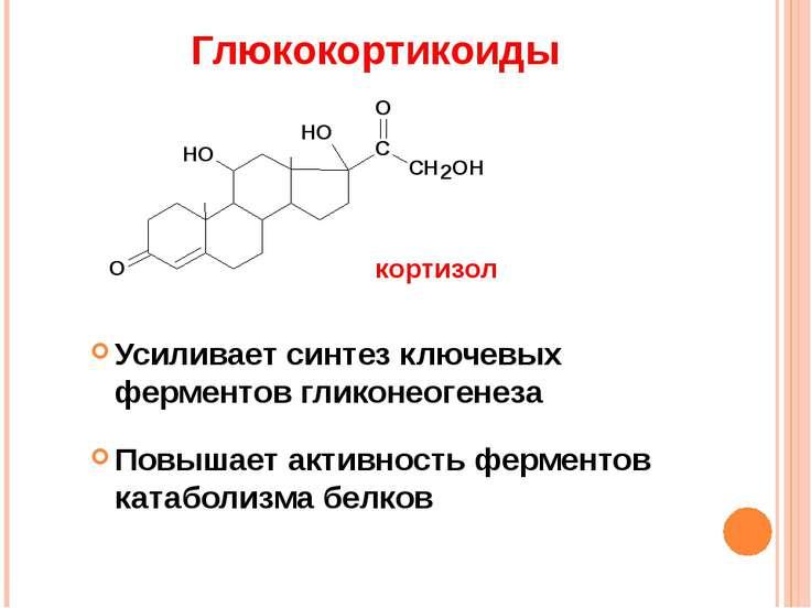 Глюкокортикоиды Усиливает синтез ключевых ферментов гликонеогенеза Повышает а...