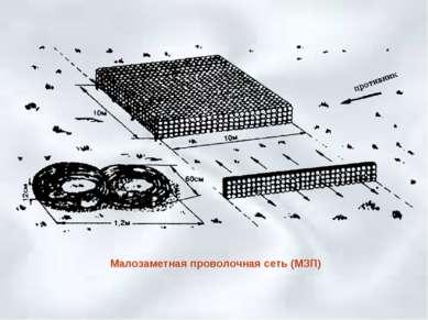 Малозаметная проволочная сеть (МЗП)