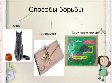 Способы борьбы кошка мышеловка Химические препараты