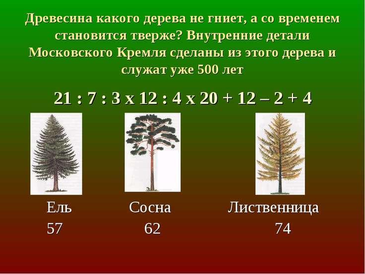 Древесина какого дерева не гниет, а со временем становится тверже? Внутренние...