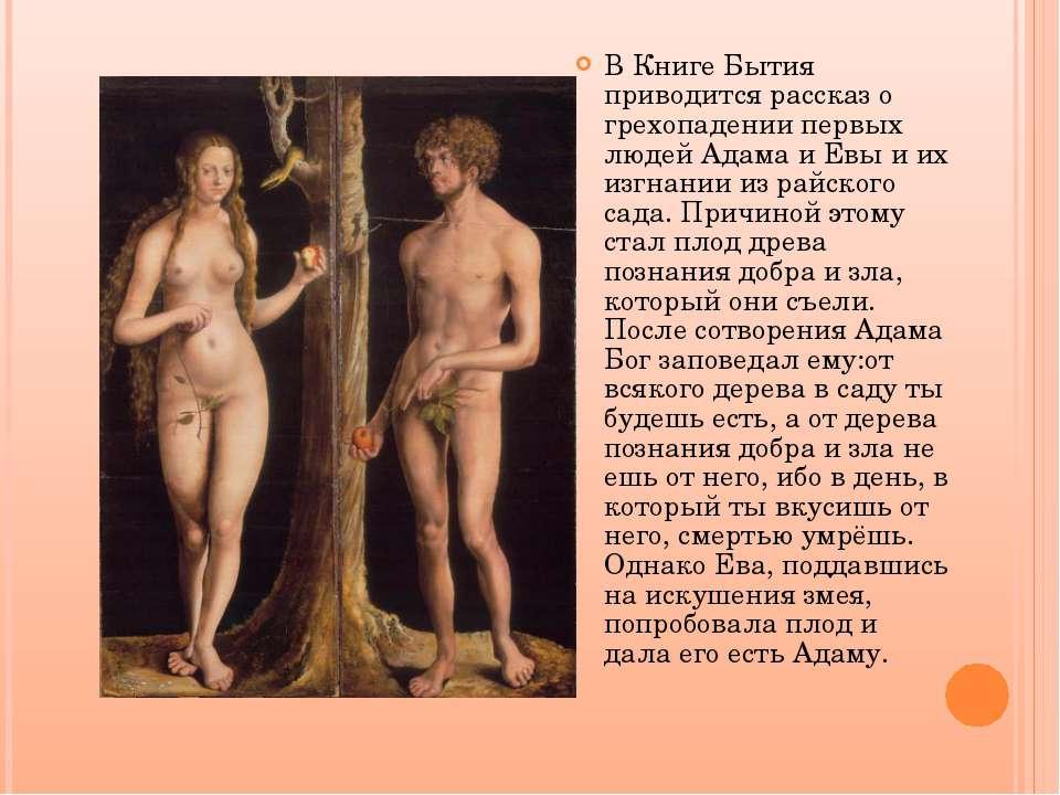 В Книге Бытия приводится рассказ о грехопадении первых людей Адама и Евы и их...