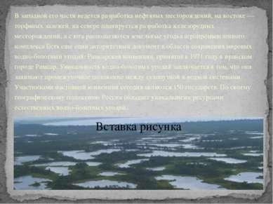 В западной его части ведется разработка нефтяных месторождений, на востоке — ...