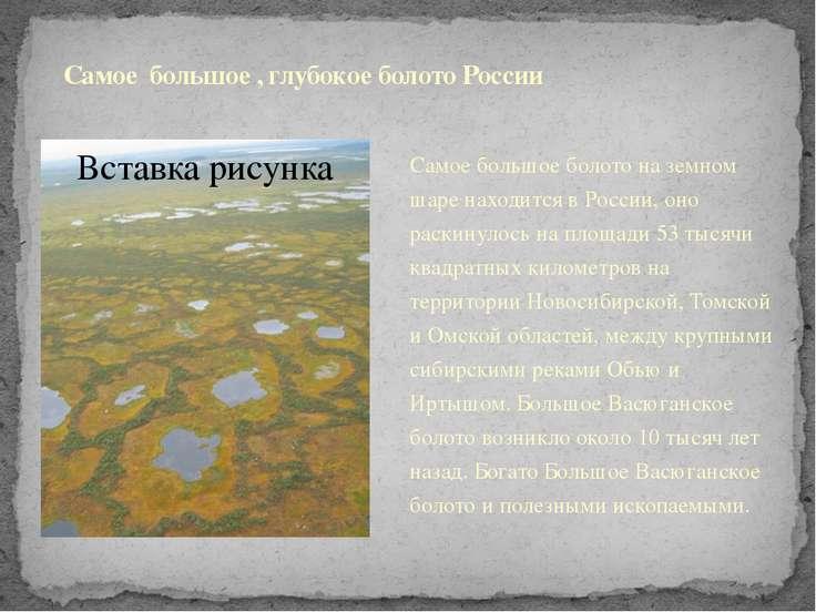 Самое большое , глубокое болото России Самое большое болото на земном шаре на...