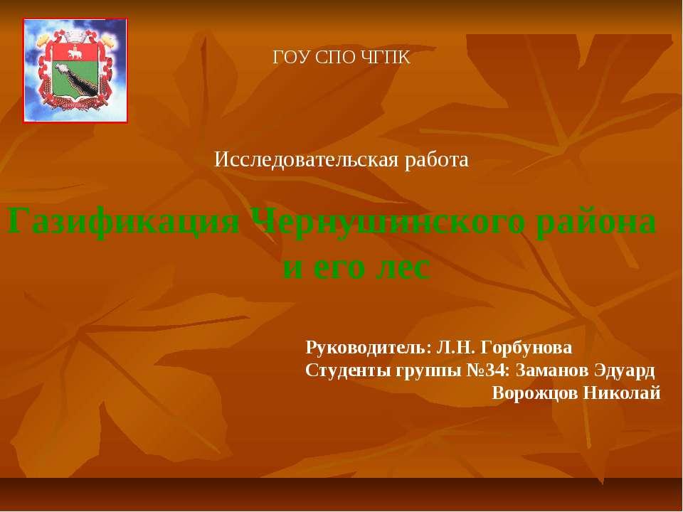 ГОУ СПО ЧГПК Исследовательская работа Газификация Чернушинского района и его ...