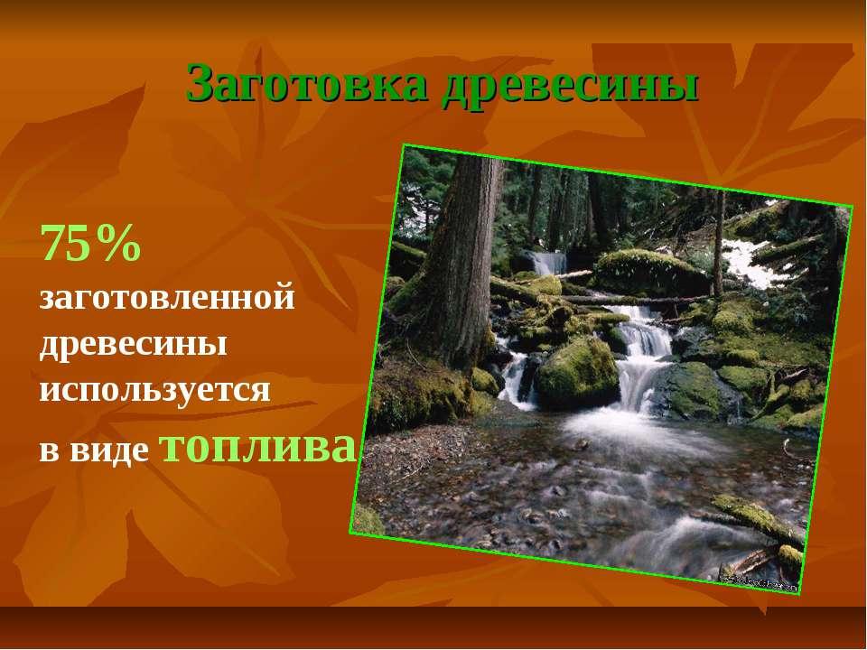 Заготовка древесины 75% заготовленной древесины используется в виде топлива
