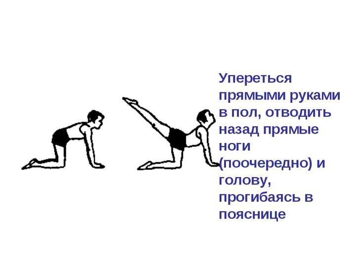 Упереться прямыми руками в пол, отводить назад прямые ноги (поочередно) и гол...