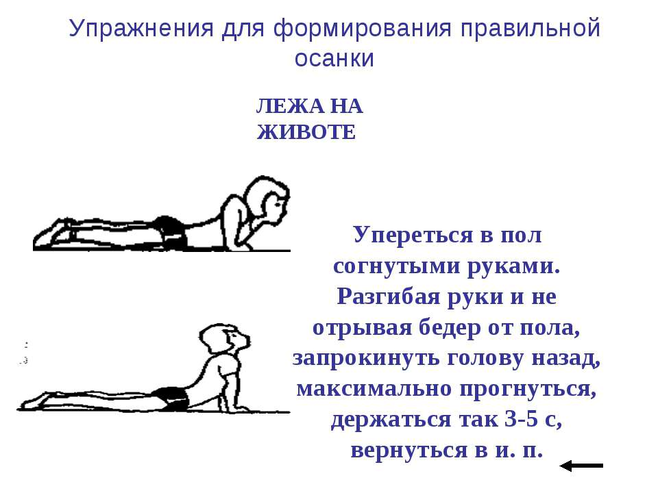 Упражнения для формирования правильной осанки ЛЕЖА НА ЖИВОТЕ Упереться в пол ...