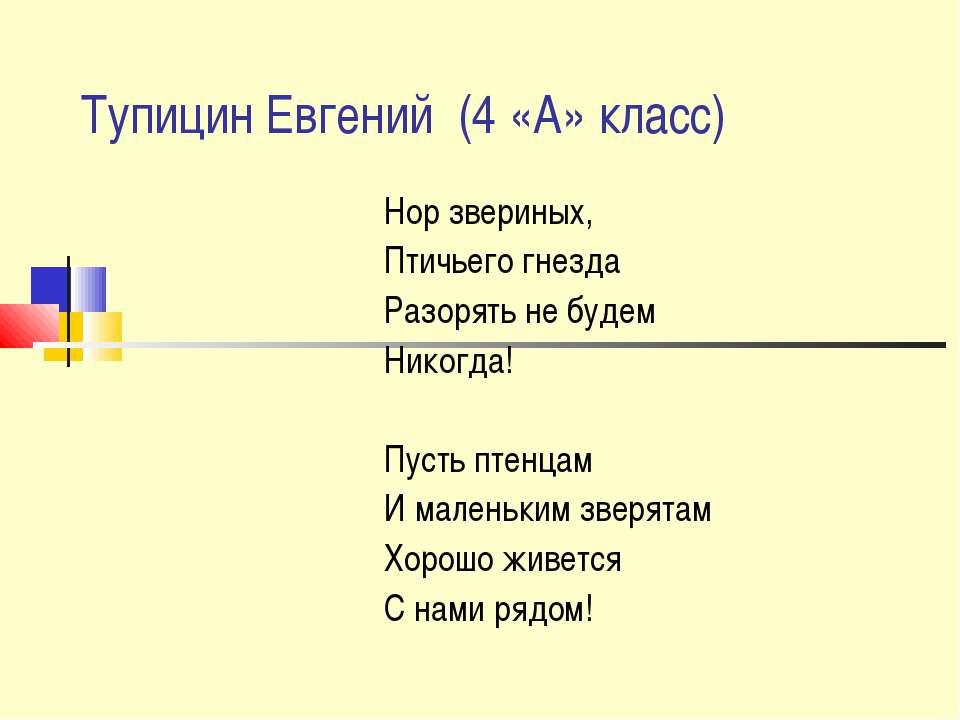 Тупицин Евгений (4 «А» класс) Нор звериных, Птичьего гнезда Разорять не будем...
