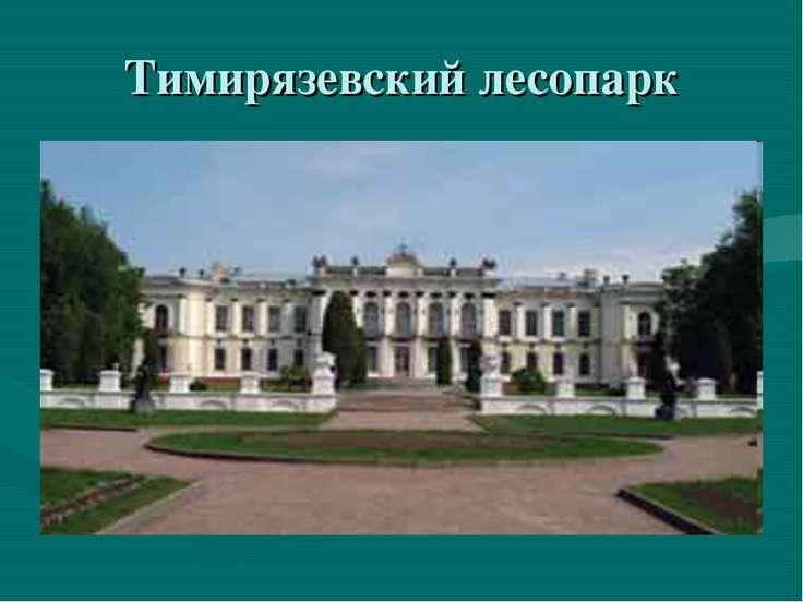 Тимирязевский лесопарк