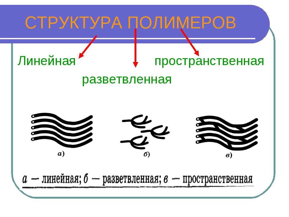 СТРУКТУРА ПОЛИМЕРОВ Линейная пространственная разветвленная