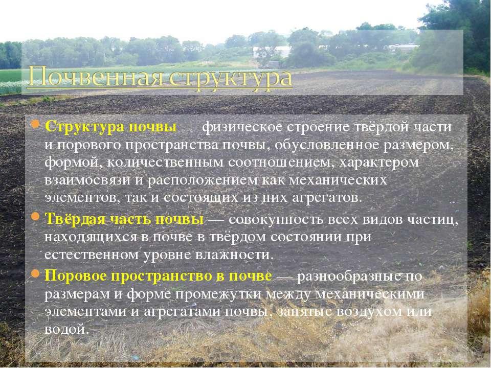 Структура почвы— физическое строение твёрдой части и порового пространства п...