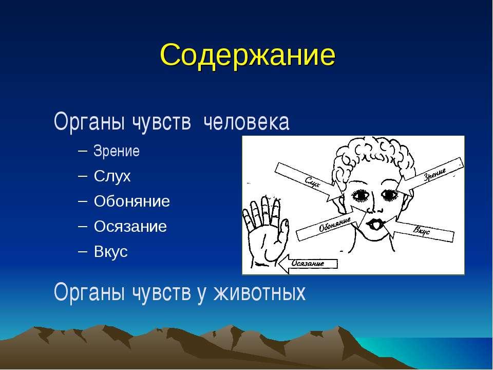 Содержание Органы чувств человека Зрение Слух Обоняние Осязание Вкус Органы ч...