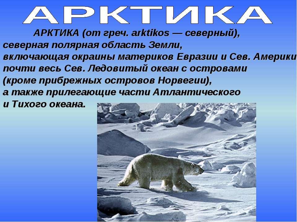 АРКТИКА (от греч. arktikos — северный), северная полярная область Земли, вклю...
