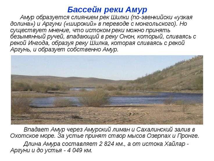 Бассейн реки Амур Амур образуется слиянием рек Шилки (по-эвенкийски «узкая до...