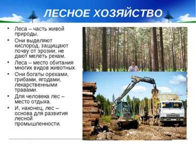 ЛЕСНОЕ ХОЗЯЙСТВО Леса – часть живой природы. Они выделяют кислород, защищают ...