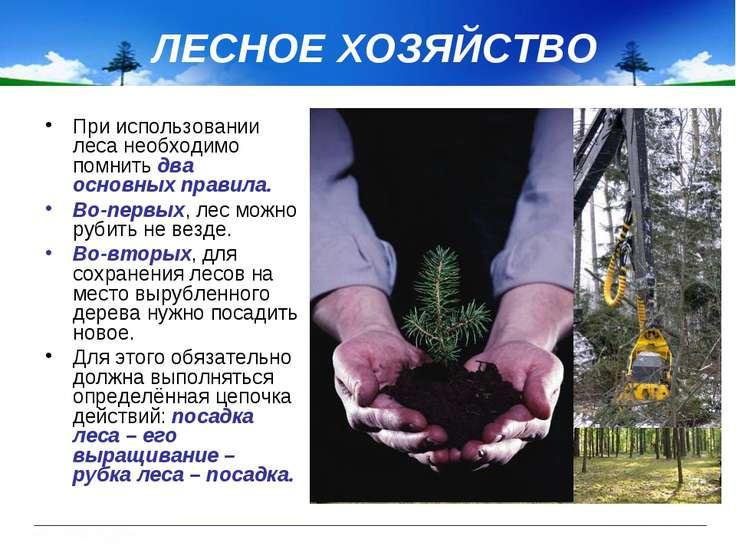 ЛЕСНОЕ ХОЗЯЙСТВО При использовании леса необходимо помнить два основных прави...