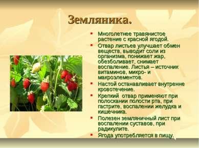 Земляника. Многолетнее травянистое растение с красной ягодой. Отвар листьев у...