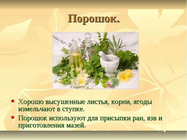 Порошок. Хорошо высушенные листья, корни, ягоды измельчают в ступке. Порошок ...