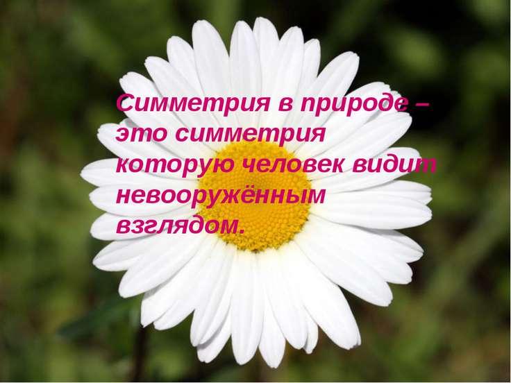 Симметрия в природе – это симметрия которую человек видит невооружённым взгля...