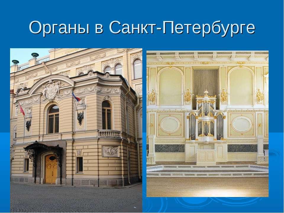 Органы в Санкт-Петербурге