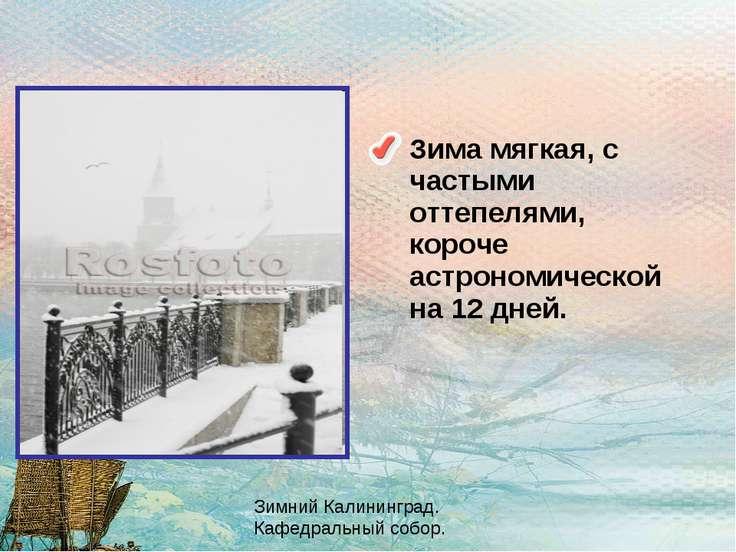 Зима мягкая, с частыми оттепелями, короче астрономической на 12 дней. Зимний ...