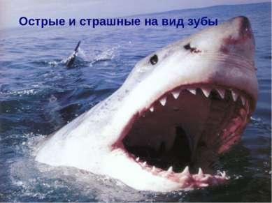 Острые и страшные на вид зубы