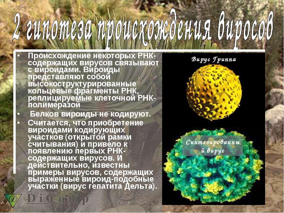 Происхождение некоторых РНК-содержащих вирусов связывают с вироидами. Вироиды...