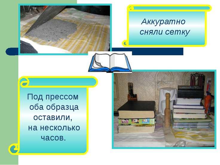 Аккуратно сняли сетку Под прессом оба образца оставили, на несколько часов.