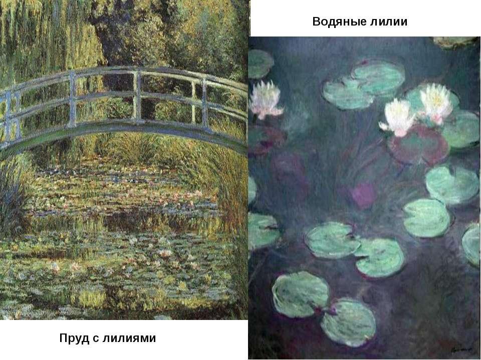 Пруд с лилиями Водяные лилии