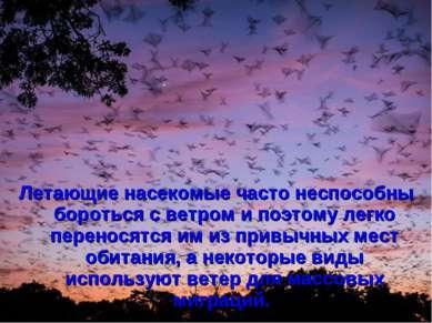 Летающие насекомые часто неспособны бороться с ветром и поэтому легко перенос...