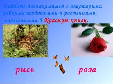 Давайте познакомимся с некоторыми редкими животными и растениями, занесенными...