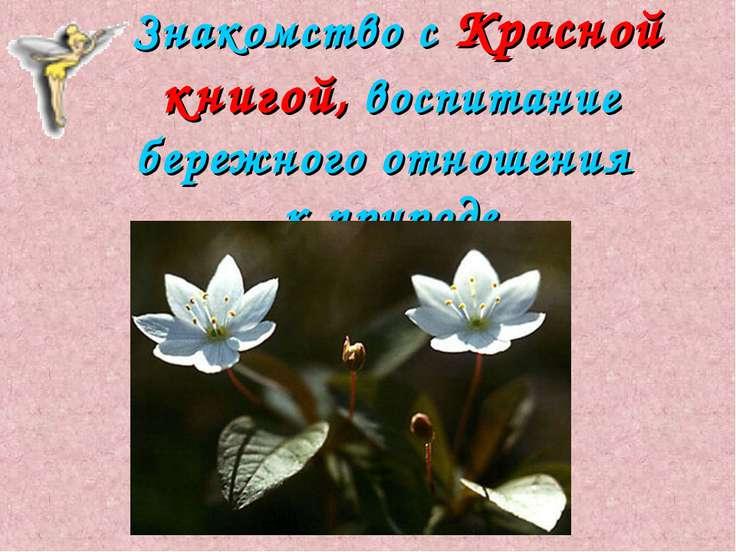 Знакомство с Красной книгой, воспитание бережного отношения к природе