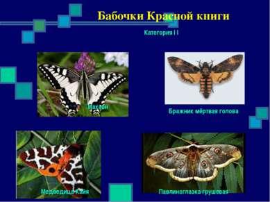 Бабочки Красной книги Категория I I Махаон Бражник мёртвая голова Павлиноглаз...