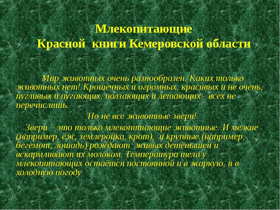 Млекопитающие Красной книги Кемеровской области Мир животных очень разнообраз...