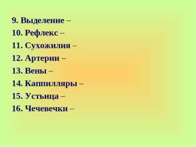 9. Выделение – 10. Рефлекс – 11. Сухожилия – 12. Артерии – 13. Вены – 14. Кап...