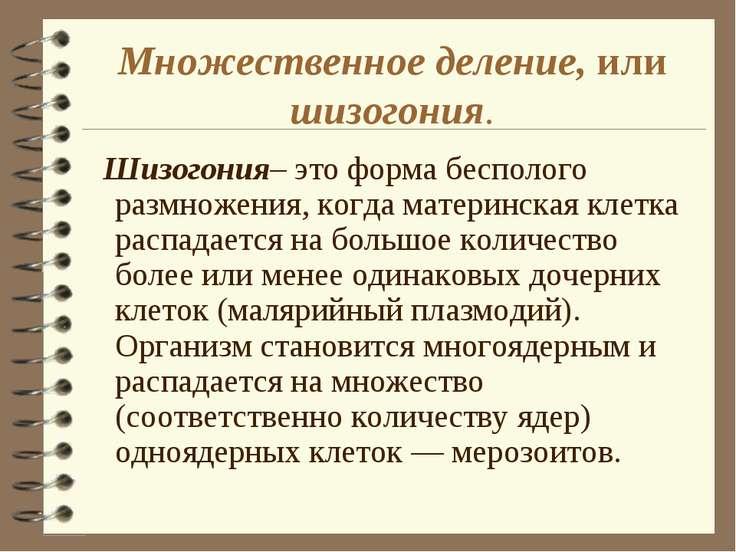 Множественное деление, или шизогония. Шизогония– это форма бесполого размноже...