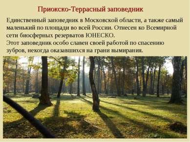 Приокско-Террасный заповедник Единственный заповедник в Московской области, а...