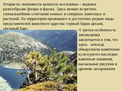 Вторая по значимости ценность котловины – видовое разнообразие флоры и фауны....