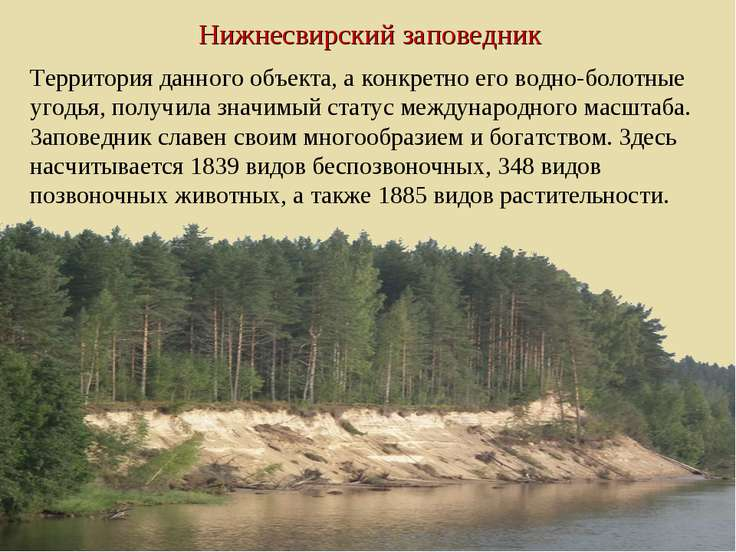 Нижнесвирский заповедник Территория данного объекта, а конкретно его водно-бо...