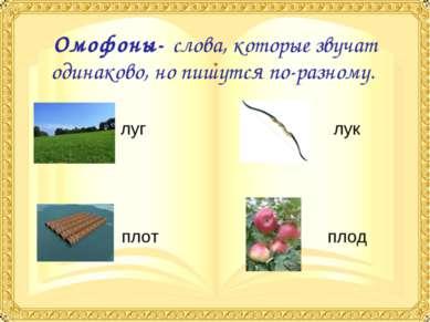 Омофоны- слова, которые звучат одинаково, но пишутся по-разному. луг лук плот...