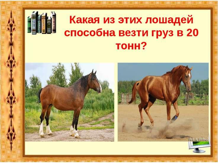 Какая из этих лошадей способна везти груз в 20 тонн?