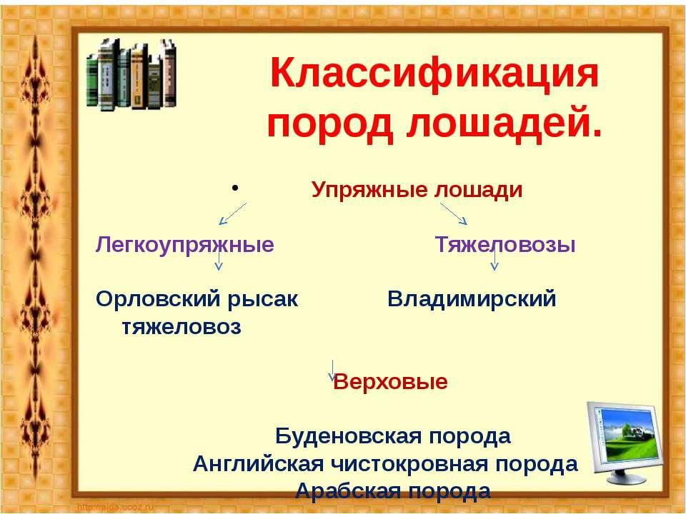 Классификация пород лошадей. Упряжные лошади Легкоупряжные Тяжеловозы Орловск...