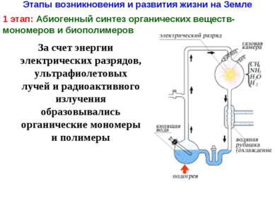 Этапы возникновения и развития жизни на Земле 1 этап: Абиогенный синтез орган...