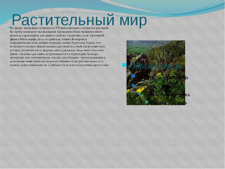 Растительный мир Во флоре заповедника отмечается 755 видов высших сосудистых ...