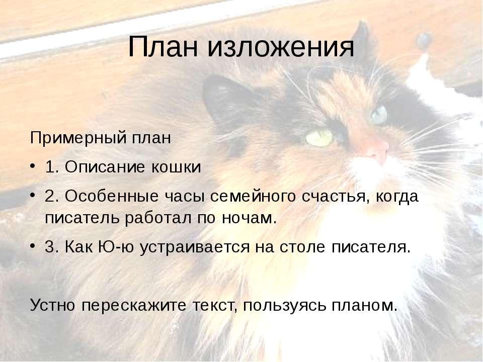 План изложения Примерный план 1. Описание кошки 2. Особенные часы семейного с...