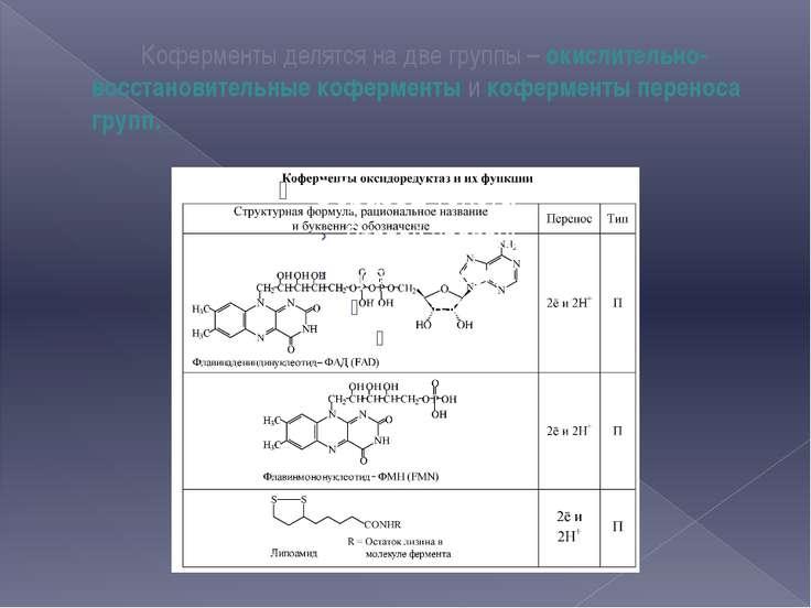 Коферменты делятся на две группы – окислительно-восстановительные коферменты ...