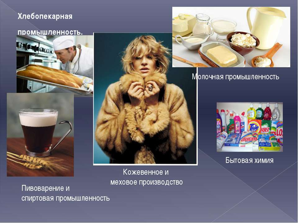 Хлебопекарная промышленность. Пивоварение и спиртовая промышленность Кожевенн...